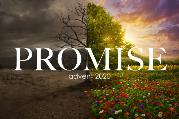 Promise (Advent 2020)